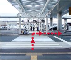 成田空港第1ターミナル横断歩道